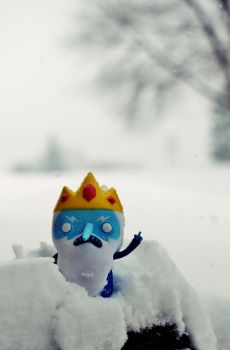 The Ice King's Wrath by Theanimalparade