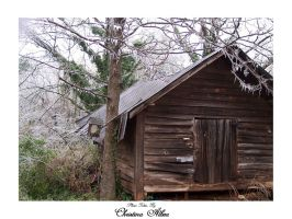 Smoke House - Icy South 3 by Liquid-angelicGrace