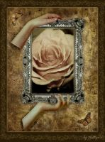 The ROSE by Nattyw