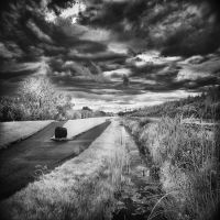 This or that way - infrared by MichiLauke