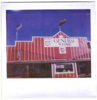 The General Store by aesthetique