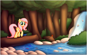 A Walk in the Woods by CTB-36