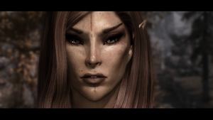 Altmer by theshadowfake