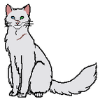 WhiteTail ~New Warrior Cat Oc~ by SCARYWOLF25