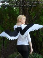 Felt Wings- Black White Skinny by Kamakru