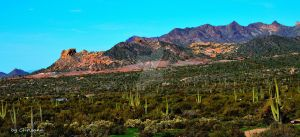 Arizona Landscape by chrisannsaz