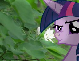 The Flower Itches by ZoruaAWESOME