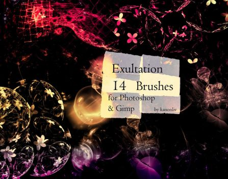 Exultation Brushes by kanonliv