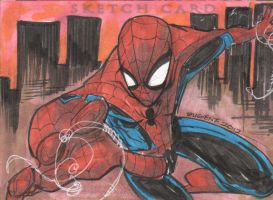 Marvel Premier Spider-Man III by eugenecommodore