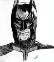 The Dark Knight Rises by SWArtwork