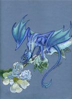 Dragon's Frost by LilyDraconis
