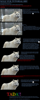 Fur Tutorial THE DISFUNCTIONS WAY by disfunctions