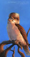 Laughing Kookaburra by Nambroth