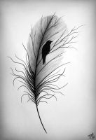 Feather by O--V