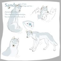 Sandr character sheet by Astarcis
