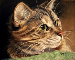 PORTRAIT OF A CAT by anniecanjump