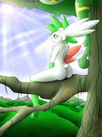 Shaymin Comission by Latiar027