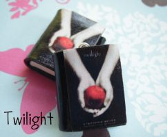 Polymer Clay Twilight Books by funkypinkgal