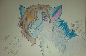 For the lovely Brooke by AnarchyWolfKira