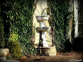 Fountain of Youth by SoulsLastSanctuary