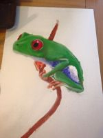 Red Eyed Tree Frog by YourPlagueDoctor