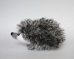 Pygmy hedgehog by LunasCrafts