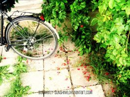 Bike between blossom by summerly-sunshine