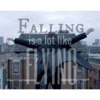 Falling Is A Lot Like Flying by 18smiths