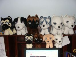 Ginga Plushies by SilverToraGe