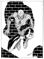 Spiderman 2011 by jamesq