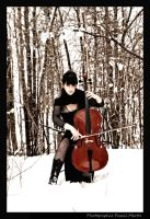winter cello by whipmaster2007