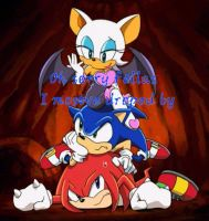 Knuckles, Sonic and Rouge Sorry to drop by Sonic X by LoonataniaTaushaMay