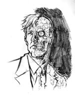 Harvey Two-Face by mistermoster