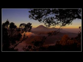 Bromo in The Morning by allanddharmawan