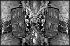 stereo vision by Wetterlage