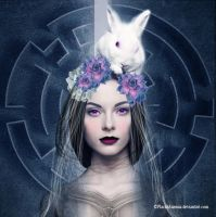 White Rabbit by PlacidAnemia