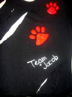 Team Jacob - front by XIf-I-Attack