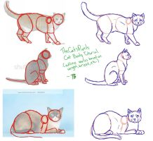 Cat Body Tutorial by TheCatsPupil