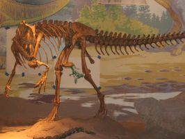 Dino 5 by wrecklesstock