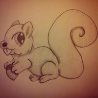 squirrel by DragonTina
