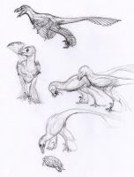 Bambiraptors by WarrenJB
