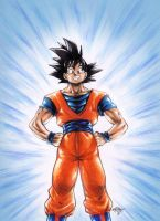 Holy Son Goku by MatiasSoto