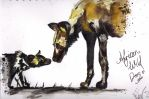 African Wild Dog by Toiger