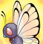 Flutterby by kis4