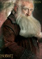 The Hobbit - An unexpected Journey - Balin by YoungPhoenix3191