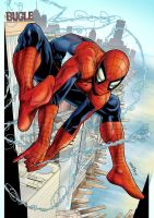 Swinging Spidey colors by spidey0318