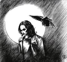 The crow by Leliumoj