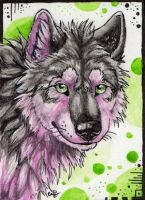 ACEO:Itsmar by Cally-Dream