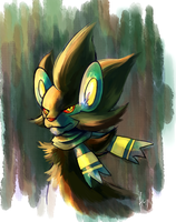 Usama the Luxray by Haychel