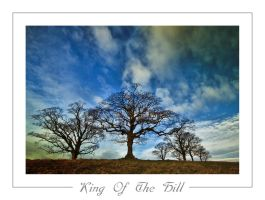 King Of The Hill by mad1dave